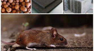 Какие утеплители не грызут мыши и крысы
